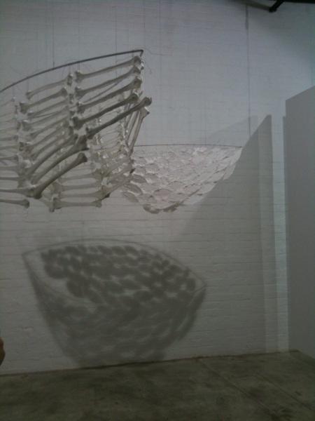 kris coad journey bones shadows dianne tanzer